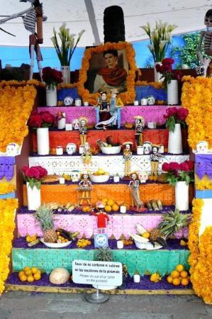 Frida-kahlo-museum-museo